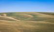 eastern Washington rolling fields
