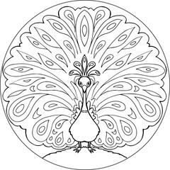 Coloring peacock mandala vector