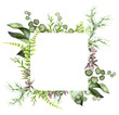 tropical frame, Template. Watercolor illustration isolated on white background. Exotic leaves and herbs