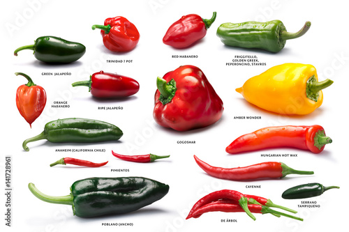 Set of pepper fruits, paths - 141728961