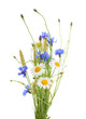 Leinwanddruck Bild - Bouquet of beautiful flowers (Cornflowers, chamomiles wheat) isolated without shadow