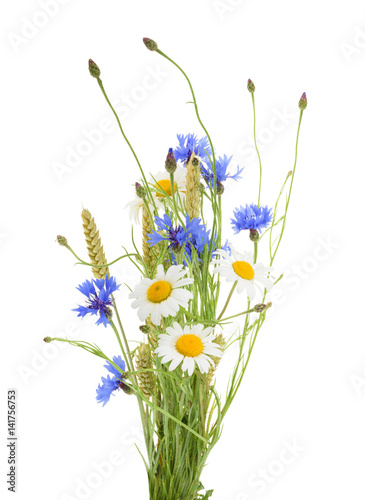 Leinwanddruck Bild Bouquet of beautiful flowers (Cornflowers, chamomiles wheat) isolated without shadow