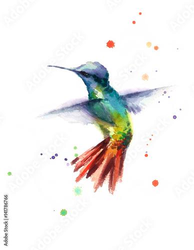 Akwarela ptak Hummingbird latający ręka Rysująca lato ogródu ilustracja odizolowywająca na białym tle