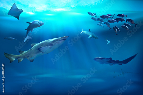 Tuinposter Koraalriffen Ocean underwater with marine animals. 3D illustration