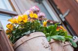 décorations fleuries devant les fenêtres d'un village typique alsacien - 141798774