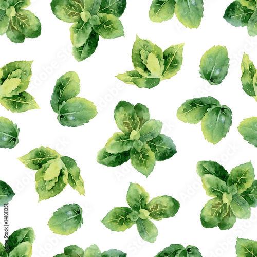 Fototapeta watercolor seamless pattern with mint