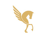 Pegasus Horse Wing