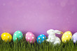 Easter eggs with a decorative hare in fresh green grass on purple background.
