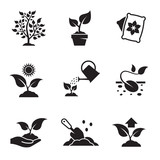 Plant growing icons set - 141836314