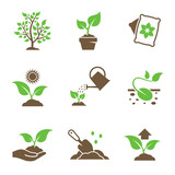 Plant growing icons set - 141836546
