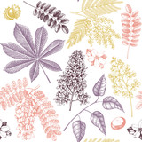 Seamless pattern with hand drawn blossoming trees illustrations. Vintage floral design. Vector botanical background. Hand sketched elements. - 141855903
