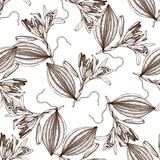 Vector background with hand drawn Vanilla illustration. Aromatic and medicinal plant seamless pattern. Perfumery and cosmetics ingredients. - 141856193