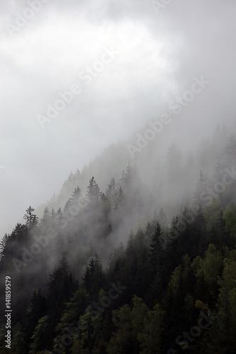 Fototapeta foggy clouds rising from dark alpine mountain forest