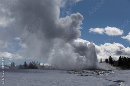 Old Faithful, The famous geyser attraction in Yellowstone known for its hot-wate Poster