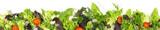 Salat - Panorama - 141869523