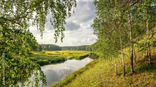 Aluminium Berkenbos летний пейзаж с березовой рощей и холмом, Россия, Урал
