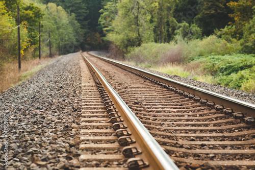 Papiers peints Voies ferrées Train Tracks in Beautiful, Lush Forest