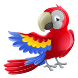 Parrot Animal Cartoon Character