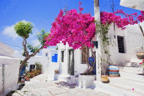 Traditional greek street with flowers in Amorgos island, Greece