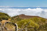 View from Montana del Cerrillal to Gran Canaria, Spain