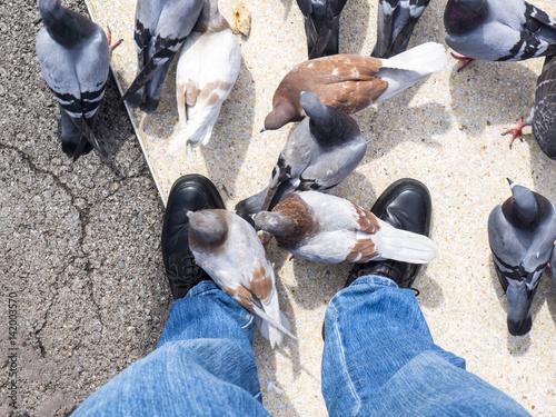 Pigeons eating at my feet in Plaza Catalunya, Barcelona, Spain