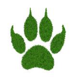 Fototapety Animal green grass footprint, vector illustration.