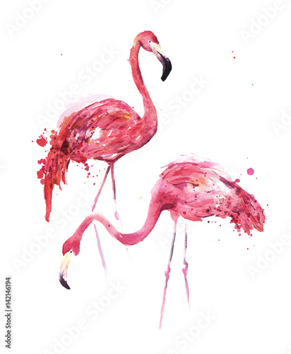 obraz lub plakat Watercolor, flamingos