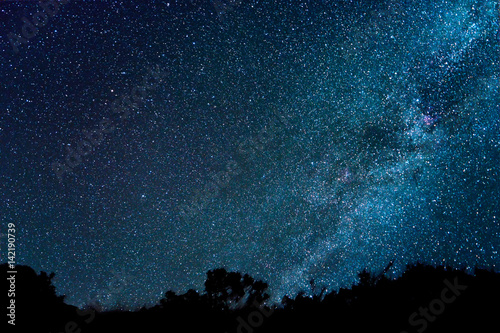 Poster Milky Way in the Sky