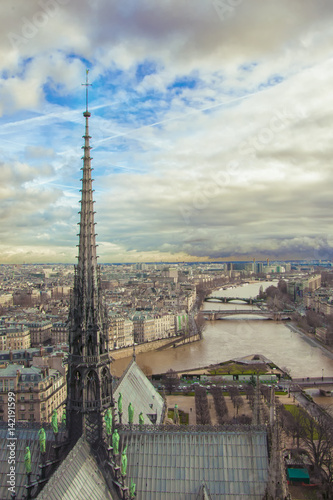 View from the roof of Notre Dame on the spire of the tower. The river Seine, the panorama of the city, the horizon and the beautiful sky. Cite Island, Paris. © M.Anais