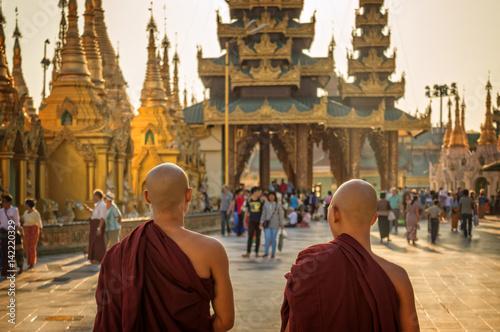 Poster Monks at Shwedagon Pagoda in Yangon, Burma Myanmar