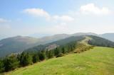 Spring landscape, Basque Country