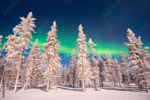 Aluminium Noorderlicht Northern lights, Aurora Borealis in Lapland, Finland