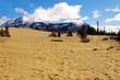Desert to Mountains