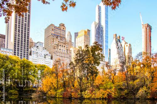New York City Skyline from Central Park