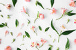 Flat lay floral pattern made of pink alstroemeria, leaves, petals - 142303918