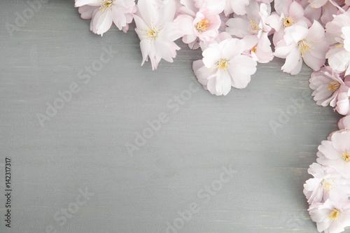 Frühlingshintergrund Poster