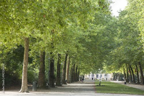 Tuinposter Brussel Brussels Park - Parc de Bruxelles - Warandepark