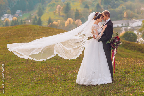 Poster Beautiful bride and groom at the mountains wind driveth bridal veil