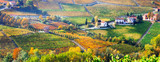 Pictorial countryside and beautiful vineyards of Piemonte in autumn colors. Italy