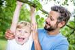 Lachender Junge turnt an einem Baum