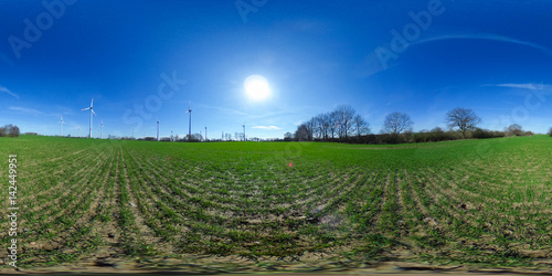 Poster 360 degrees spherical panorama of green Agriculture fields  with blue sky - ge