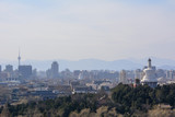 Panoramic view of Beijing, China