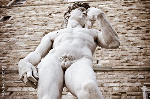 The statue of David by Michelangelo on the Piazza della Signoria in Florenc Poster