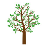 colorful tree with leafy branches vector illustration - 142472906
