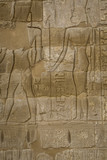 Symbols signs figures of the Pharaohs in Egypt, the wall in Luxor