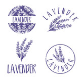 Set of template logo design of abstract icon lavender. Vector illustration - 142484118