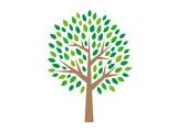 木のイラスト - 142484317