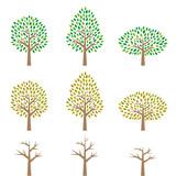 木のイラストセット - 142484376