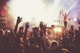 crowd at concert - summer music festival - 142515987