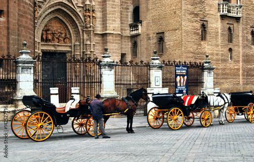 Coches de caballo en la catedral de Sevilla